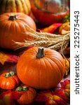 traditional pumpkins for... | Shutterstock . vector #225275443