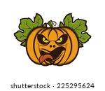 the pumpkins | Shutterstock .eps vector #225295624