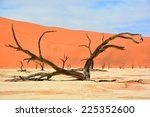 Deadvlei Is A White Clay Pan...