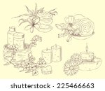 Vector Collection Of Beauty An...