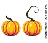 Detailed Two Pumpkins...
