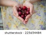 female hands holding fresh sour ...   Shutterstock . vector #225654484