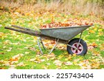Wheelbarrow filled with autumn leaves, sweden - stock photo