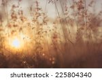 amazing sunrise at summer... | Shutterstock . vector #225804340