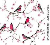 Bullfinches On The Sakura...