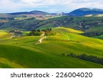 typical summer rural landscape... | Shutterstock . vector #226004020