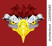 eyes of eagle with geometric...   Shutterstock .eps vector #226004680