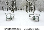 Benches In The Winter Park...