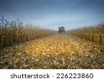 Retracted Cornfield After A...