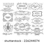 thin line frames and scroll... | Shutterstock .eps vector #226244074