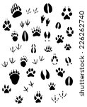 big set of animal footprints... | Shutterstock .eps vector #226262740