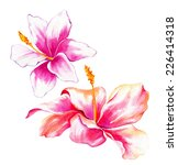 Two Watercolor Exotic Flowers....