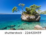 croatian beach at a sunny day ... | Shutterstock . vector #226420459