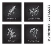 handdrawn illustration   health ... | Shutterstock .eps vector #226422283