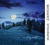 path on a slope of mountain range with coniferous forest at night in full moon light - stock photo