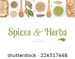 spices and herbs on white... | Shutterstock . vector #226517668
