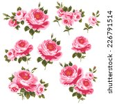 illustration of rose  | Shutterstock . vector #226791514