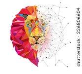 lion head in geometric pattern... | Shutterstock .eps vector #226806604