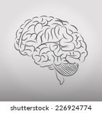 human brain. illustrations on a ... | Shutterstock . vector #226924774