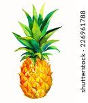 single juicy pineapple isolated ... | Shutterstock . vector #226961788