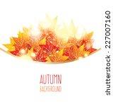 maple autumn leaves | Shutterstock .eps vector #227007160