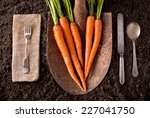 Carrots Organic Farm To Table...