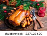 christmas duck | Shutterstock . vector #227123620