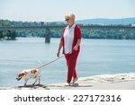 Stock photo senior woman walking her dog 227172316