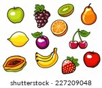 fruit set. vector illustration. | Shutterstock .eps vector #227209048