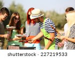 young friends having barbecue... | Shutterstock . vector #227219533