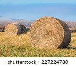 Round Hay Bales Rest In Field...