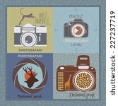 vector set of safari labels | Shutterstock .eps vector #227237719
