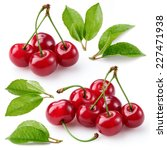 cherry. berries with leaves... | Shutterstock . vector #227471938