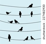 group of birds on wires. black... | Shutterstock .eps vector #227482930