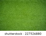 green grass | Shutterstock . vector #227526880