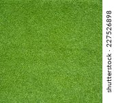 green grass | Shutterstock . vector #227526898