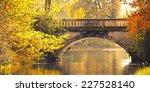 autumn landscape. park in...   Shutterstock . vector #227528140