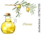 watercolor illustration with... | Shutterstock .eps vector #227562703