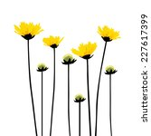 Yellow Flowers On A Stalk....