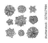 set of flowers | Shutterstock .eps vector #227617984