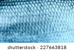 asp fish scales  natural... | Shutterstock . vector #227663818