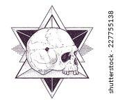 dot work skull illustration... | Shutterstock .eps vector #227755138