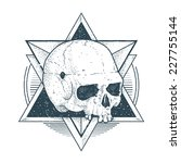 dot work skull illustration... | Shutterstock .eps vector #227755144