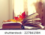 Book Pages Yellow Leaves Of...
