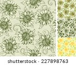 vintage floral backgrounds.... | Shutterstock .eps vector #227898763