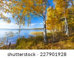 Stock photo autumnal park autumn trees and lake 227901928