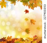 autumn leaves | Shutterstock . vector #227903353