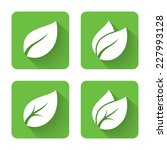 flat leaves icons. vector... | Shutterstock .eps vector #227993128