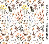 herbal watercolor pattern. hand ... | Shutterstock .eps vector #227996146