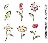 outlined hand drawn flower... | Shutterstock .eps vector #228096919
